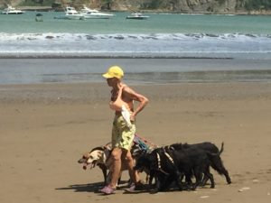 Local woman walking her dogs with her bird.