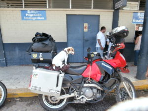 Jackie patiently waiting on the Guatemala side of the border.